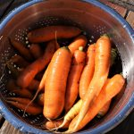 Carrot harvest summer 2015